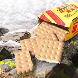 Outdoor Kekse, CONVAR-B (14 x Hartkekse (155g))